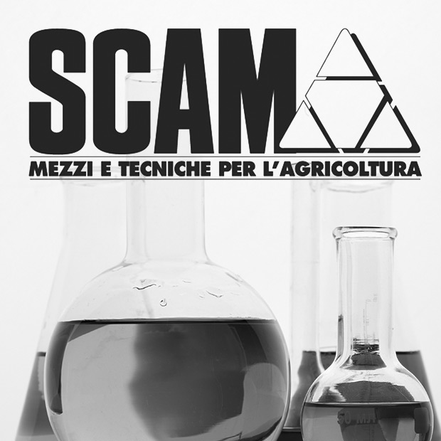 scam-chimica