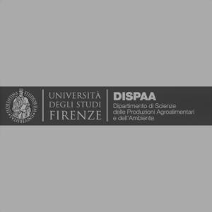DISPAA 620 BN