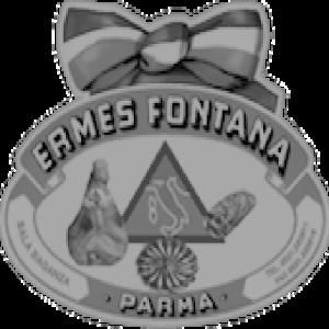 Logo-ermes-fontana-620b.ncpx