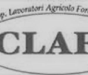 CLAFF_bn